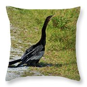 Mirthful Melody Throw Pillow