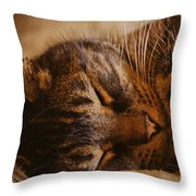 Mischief-free Throw Pillow