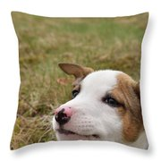 Mischief On The Farm Throw Pillow