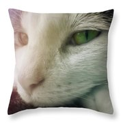 Miss Ginny Throw Pillow