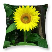 Miss Sunshine Throw Pillow
