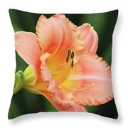 Miss Tinkerbell Daylily Throw Pillow