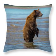 Missed It Throw Pillow