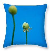 Missing Petals Leave Me Blue Throw Pillow