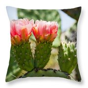 Missing Triplet Throw Pillow
