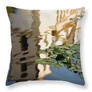 Mission Reflection Throw Pillow