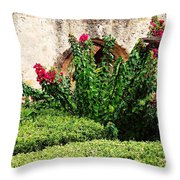 Mission San Jose' Flora Beauty Throw Pillow