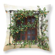 Mission Window With Yellow Flowers Throw Pillow