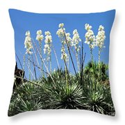 Mission Yuccas Throw Pillow