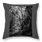 Missisquoi River In Vermont - 1 Bw Throw Pillow
