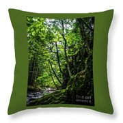 Missisquoi River In Vermont - 1 Throw Pillow