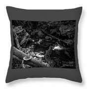 Missisquoi River In Vermont - 2 Bw Throw Pillow