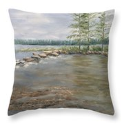 Mississippi Headwaters 2  Throw Pillow