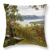 Mississippi River Lake Pepin 8 Throw Pillow