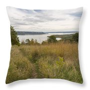 Mississippi River Lake Pepin 9 Throw Pillow