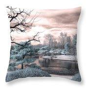 Missouri Botanical Garden Infrared Pond Blue Throw Pillow