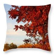 Missouri Fall Throw Pillow