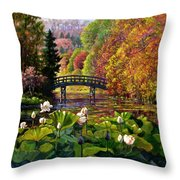Missouri Memories Throw Pillow