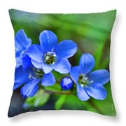 Missouri Wildflowers 5  - Polemonium Reptans -  Digital Paint 1 Throw Pillow
