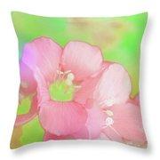Missouri Wildflowers 5  - Polemonium Reptans -  Digital Paint 7 Throw Pillow