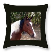 Missy 1 Throw Pillow