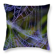 Mist In The Web  Throw Pillow