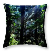 Mist, Leaves And Sunlight Throw Pillow