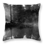 Mist On The Pond Throw Pillow