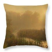 Mist Sunrise Throw Pillow