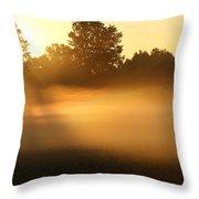 Mist Waves  Throw Pillow