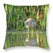 Mistaken Identity Throw Pillow