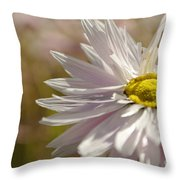 Mistakenly Secrets Throw Pillow