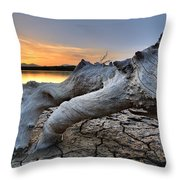 Mistery Old Tree Throw Pillow