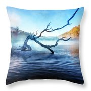 Mists Of The Morning Throw Pillow
