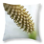 Misty Abstraction Throw Pillow