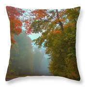 Misty Autumn Road Throw Pillow