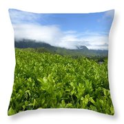Misty Clouds Throw Pillow