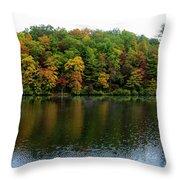 Misty Day On Lake Winfield Scott Throw Pillow