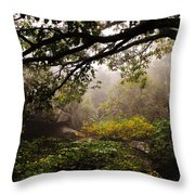 Misty Distance Throw Pillow