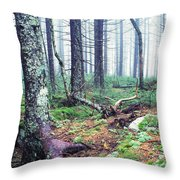 Misty Forest Gaudineer Scenic Area Throw Pillow