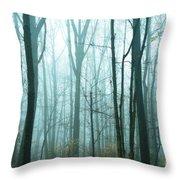 Misty Forest Throw Pillow by John Greim