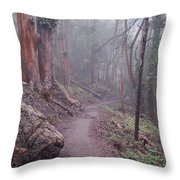 Cloud Forest- Mount Sutro Throw Pillow
