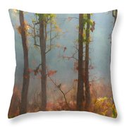 Misty Indian Morning Throw Pillow
