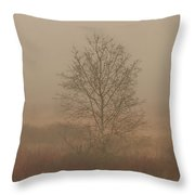 Misty Late Fall Landscape Throw Pillow