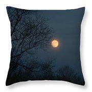 Misty Moonrise Throw Pillow