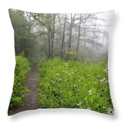 Misty Morning Cranberry Glades Throw Pillow