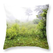Misty Morning In The Glades Throw Pillow