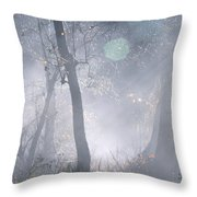 Misty Morning - Ojai California Throw Pillow