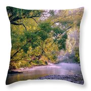 Misty Morning On Nariel Creek Throw Pillow