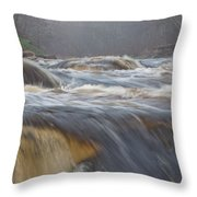 Misty Morning On The River Throw Pillow